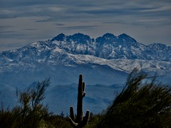 Four Peaks outside Phoenix (wlemieux) Tags: arizona fourpeakswilderness tontonationalforest mountains phoenix