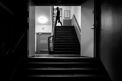 (fernando_gm) Tags: estocolmo suecia fotografiska museum museo stairs escaleras shadow sombras people person persona human hombre street monochrome monocromo monocromatico man blackandwhite bw blancoynegro fuji fujifilm 1024mm xt1