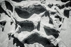 Verwitterte Sandsteinfassade in Mdina --- Weathered sandstone facade in Mdina (der Sekretär) Tags: detail eigenschaften fassade malta mdina sandstein stein abgeblättert abgebröckelt alt bröcklig closeup facade façade freestone front old sandstone stone verwittert weatherbeaten weathered