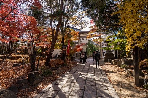 Gardens near Yohashira Shrine