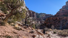 Capitol Reef NP Grand Wash 02-26-2018 (Jerry's Wild Life) Tags: capitolreef capitolreefgrandwash capitolreefnp capitolreefnationalpark grandwash utah