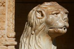 Lion (Nick_Leonard) Tags: portugal lisbon lisboa lion lisbonne belém belem monastery mosteiro jerónimos manueline portuguese architecture theageofdiscovery ageofdiscovery 2019 travel 16thcentury