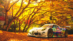 Alfa Romeo 4C Gr. 3 (at1503) Tags: bright sunlight colors colourful autumn autumncolours yellow orange leaves trees fallenleaves car italiancar racingcar japan golden wheels livery customlivery alfaromeo 4c alfaromeo4c gtsport granturismo granturismosport motorsport racing game gaming ps4