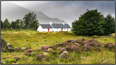 la maison du Glencoe (pileath) Tags: 15ballachullishglencoe 2018ecosse voyages glencoe ecosse scotland maison house blanche white landscape paysage verdure green glass tree arbre