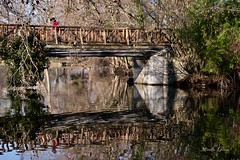 Lady in red on the bridge (Mireille L.) Tags: pont reflets bridge reflections person canonphotography canoneos70d