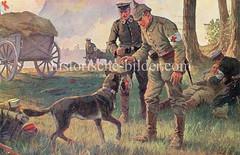 X990023 arbeitshund deutschland (stadt + land) Tags: hunde hund bilder fotos arbeitshund historisch früher aufgabe transport alte fotografien