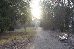 Parc des Raisses @ Annecy-le-Vieux (*_*) Tags: winter hiver 2019 february europe france hautesavoie 74 annecy savoie annecylevieux parcdesraisses park