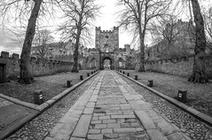 Durham Castle. (CWhatPhotos) Tags: cwhatphotos camera photographs photograph pics pictures pic picture image images foto fotos photography artistic that have which contain flickr olympus omd em10 mk ll ii mzuiko 8mm prime fisheye fish eye lens durham north east england uk river wear city centre water concrete structure cobbles cobbled road entrance archway arch trees tree lined foot path footpath walk iconic building castle