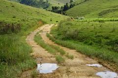 Muitas poças no caminho difícil (Márcia Valle) Tags: roça verde green juizdefora minasgerais brazil brasil zonarural rurallandscape paisagemrural márciavalle nikon d5100 verão summertime tropicallandscape