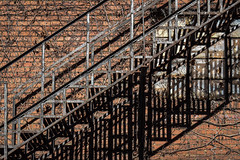 Fire Escape (tim.perdue) Tags: fire escape alley downtown columbus ohio urban city exploration urbex decay brick wall window vines overgrown light shadow sunlight pattern lines shapes repetition abstract detail diagonal old abandoned