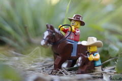 [Real World] (65) Horse Ride (Ricky.Silva) Tags: lego legophotography minifig legominifig comunidade0937 c0937 canon