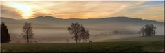 good morning daylight (friedrichfrank1966) Tags: daylight morning sonnenaufgang clouds wolken panorama light meadow trees green nature naturephotography scene march pano monutains blue sky himmel azur fog nebel gebäude häuser national outside landscape