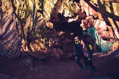 KRIS8006 (Chris.Heart) Tags: erdő buda budapest túra természet forest nature hiking