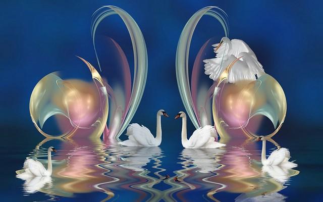 Обои лебеди, узоры, плавать, красиво картинки на рабочий стол, фото скачать бесплатно