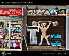 1086_D8C_9673_bis_Barcelona_Murales (Vater_fotografo) Tags: geo:lat=4137726620 geo:lon=215853140 geotagged barcelona barcellona vaterfotografo ciambra clubitnikon murales murale espana españa es spagna nikonclubit nikon ngc arte artistadistrada colori