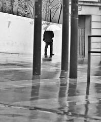 No te quedes donde sólo te quieren cuando quieren. (Elena m.d. +10.3 Millions views.) Tags: guadalajara new 2019 nikon d5600 sigma sigma105 monocromo bn bw street callejera rain