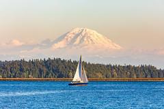 This is Your Paradise (Thomas Hawk) Tags: america mountranier mtranier ranier seattle usa unitedstates unitedstatesofamerica washington washingtonstate boat fav10 fav25