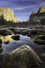 Yosemite National Park (3dRabbit) Tags: yosemite national park winter 2019 january sungjinahn outdoor vertical nikon d810 20mm