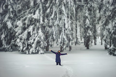 So vast is winter... (petrapetruta) Tags: trees winter snowy forest