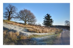 A cold and frosty start! (Nina_Ali) Tags: landcape frost winter2019 leicester england
