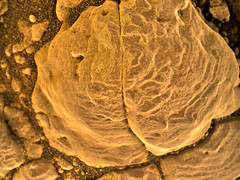 Blob of a Rock in Gale Crater, variant (sjrankin) Tags: 5february2019 edited nasa 2304mh0002990010803855c00dxxx galecrater msl curiosity closeup rock sand cracks
