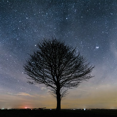 Tree on a clear night (Andy barclay) Tags: tree trees field landscape nightscape night dark sky stars star solarsystem galaxy long ezposure exposure lincolnshire uk louth nikon d7100 cold