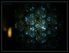 -Warm Winter Amber (SDG DiamondHead Photo Art) Tags: art photography abstractphotography digitalart virtualarts contemporaryart amber ambercolor winterart amberart warm winter indoor abstract diamondheadphotoart dh warmwinteramber