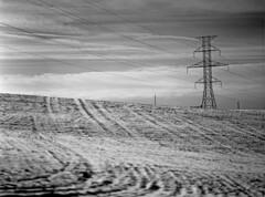 (toulouse goose) Tags: film ilford hp5 400 mamiya 645 e 120 sekor150mm35 mediumformat kodak d76 homedeveloped epson v500 winter field highvoltage transmission line