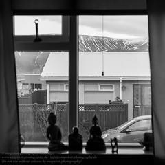 Die Fenster von Reykjavik (Agentur snapshot-photography) Tags: 012200 012300 alltag architecture architektur bauwerke berg berge bergig bevölkerung blackwhite buddha buddhafigur building bw cityscape effekt einblick einblicke fenster garden garten gärten gebäude gebirge gebirgslandschaft gebirgszug gesellschaft hauptstadt haus häuser iceland isl island isländisch landscape landschaft landschaften landschaftsaufnahme lebensalltag lebenswelten momentaufnahme mountains reykjavik reykjavíkurborg schnappschuss schwarzweiss stadt stadtansichten städte stadtlandschaft sw symbol symbolbild symbolfoto symbolfotos symole urbanlandscape window windows wohnen wohngebäude wohnhaus wohnwelten
