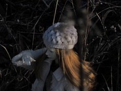 frozen (tarengil) Tags: zaoll zaolluv dollmore balljointeddoll asiandoll bjd abjd dollstagram