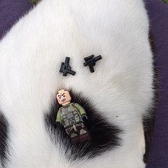 It's So Fluffy I'm Gonna DIE!! (Pookie_Monster) Tags: its so fluffy im gonna die scout trooper vacation part 1 lego star wars storm figure photography kitty camo guns bw cat