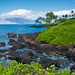 Wailea Walk Coastline