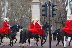 Horse Guards and traffic light (ioannis_papachristos) Tags: swords cavalry horseback horse horseguards guards royalguards queen'slifeguards royal queen sovereign ruler king palace buckingham mall themall greenpark park trafficlight traffic light red tunic uniform army armedforces britisharmy london uk travel tourist attraction contrast oldandnew old new tradition electricity postcavalry modern january winter papachristos canon eosm50 mirrorless tourism ride riders riding pedestrians parade royalguard england english britain soldiers fast rapid people monarchy ceremony