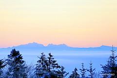 Der Alpstein, von der Lueg aus gesehen (HITSCHKO) Tags: emmental oberaargau winter schnee säntis alpstein lueg affolternimemmental bern schweiz