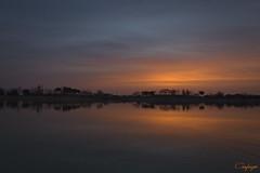 El triunfo de la luz sobre las tinieblas...52/365 (cienfuegos84) Tags: cienfuegos84 amanecer sunrise sol sun