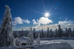 Winter (-Jan-) Tags: harz brocken sony alpha a7iii a7m3 zeiss 2470 2470zeissf4