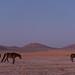 Namibie def-15