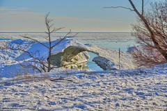 Frozen (gabi-h) Tags: ice frozenwave lakeontario princeedwardcounty shore snow trees beach gabih winter blue white ontario water