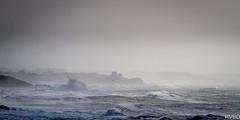 L'oiseau dans la tempête (RVBO) Tags: bretagne breizh brittany bzh finistère tempête ocean vagues storm doëlan