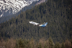 Boeing 737-790 fly by Tongass Forest (Gillfoto) Tags: boeing alaskaairlines tongassnationalforest tongassnationalpark juneau alaska evergreen southeastalaska forest raincountry rainforest gillfoto