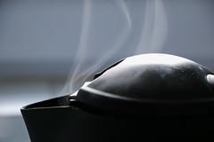 (Theopbr) Tags: vapeur fumée proxiphotographie proxi proxiphotography 18135 135mm ef 18135mm canon eos 750d eos750d chaleur thé bouilloire boiler boiling water eau