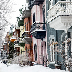 015-Berri-photo susan moss (The Montreal Buzz) Tags: montreal quebec canada neige snow snowing winter plateau architecture