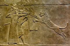 London 2018 – British Museum – Lion hunting (Michiel2005) Tags: ashurbanipal assyria exhibition tentoonstelling assyrian relief reliëf lionhunting lionhunt leeuwenjacht britishmuseum bm uk unitedkingdom greatbritain vk verenigdkoninkrijk grootbrittannië engeland england london londen leeuw lion