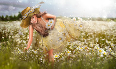 Daisy field (meriluu17) Tags: moonamore daisy daisies field grass flowers flower flora people portrait dream dreamy gather wind magic magical