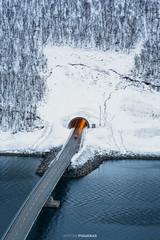 The tunnel (Antoni Figueras) Tags: tunnel bridge snow car mountain trees winter senja illuminated norway gryllefjord sonya7rii sony24105f4 antonifigueras