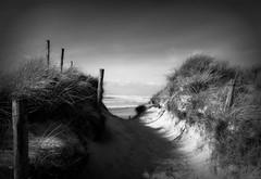 Cap de la Torche... (kate053 (peu présente)) Tags: bretagne finistère capdelatorche vagues dunes chemin mer