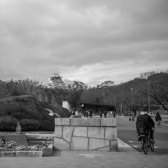Osakajo Park(大阪城公園) (Hideki-I) Tags: square bw blackandwhite monochrome osakajopark osaka japan nikon d850 2470 bird castle osakacastle 大阪城 日本 大阪 大阪城公園 白黒 黑白