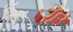 Rennes et traîneau du père Noël (JPC24M) Tags: renne cadeau ours bear gift santaclaus reindeer santassleigh oursblanc oursbrun