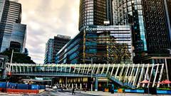 Street life (Miradortigre) Tags: arquitectura architecture sydney australia modern glass tower torre vidrio steel moderna city street life ciudad calle vida bridge puente oficina office work