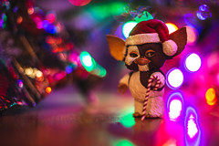 Did you get what you wanted? (3rd-Rate Photography) Tags: gizmo gremlins gremlin mogwai christmas toy toyphotography actionfigure neca canon 50mm 5dmarkiii jacksonville florida 3rdratephotography earlware 365